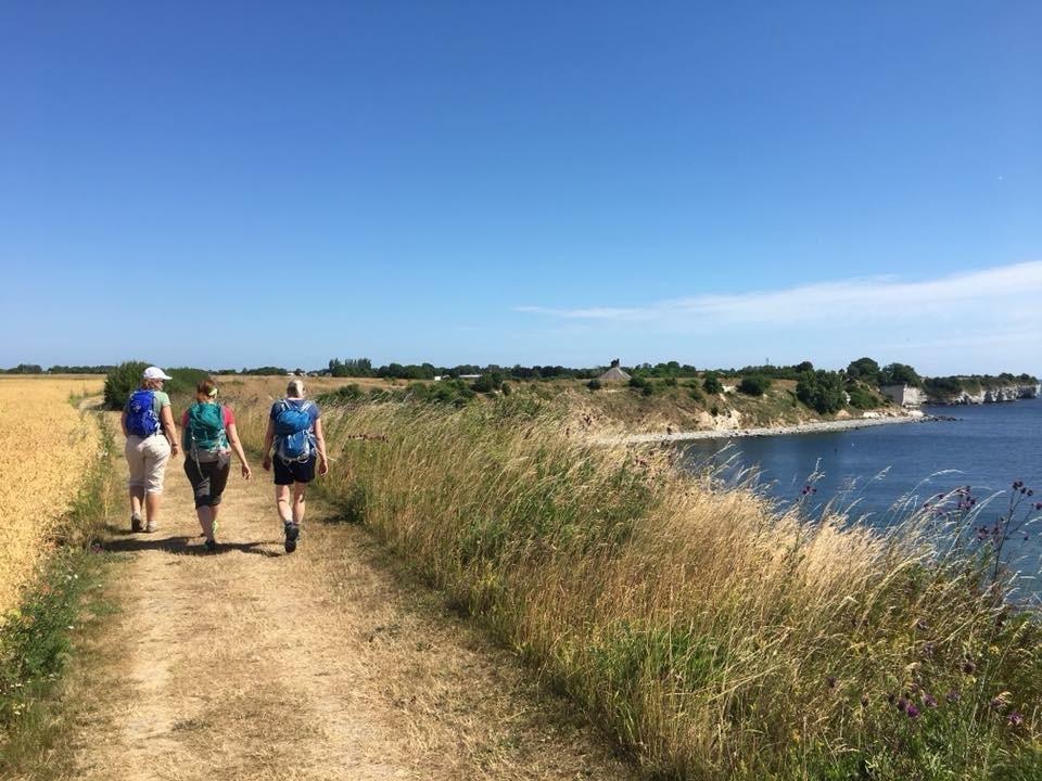 3 kvinder vandrer på trampestien på Stevns