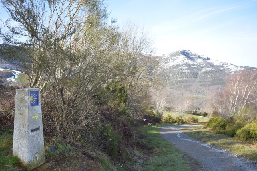 Billede af camino vandresti