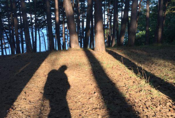 skyggebillede af vandrer