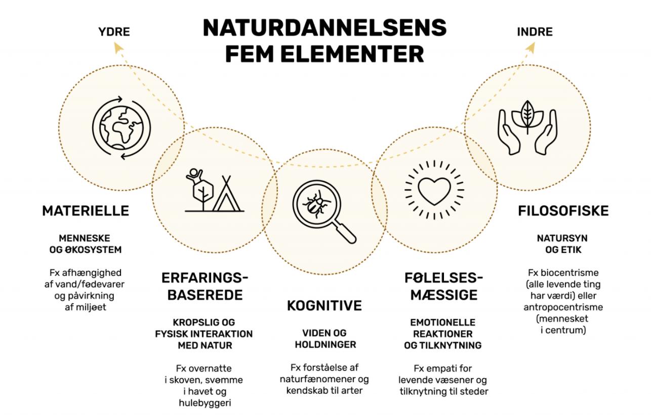Naturdannelsens 5 elementer